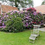 Der Bauerngarten - eine Oase der Ruhe
